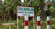 Thumb_socapalm-unité-de-kienke