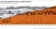 Thumb_2008259_comment-les-investisseurs-partent-a-lassaut-des-terres-agricoles-francaises-web-tete-0211047386564_1000x533