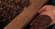 Thumb_l_chocolat