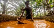 Thumb_sierra_leone_palm_oil_spip-2-19cb3