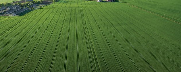 Canada: Senate to investigate farmland ownership