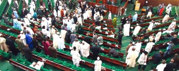 Nigerian parliament condemns land grab by Chinese firms