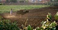 Thumb_a-sudanese-farmer