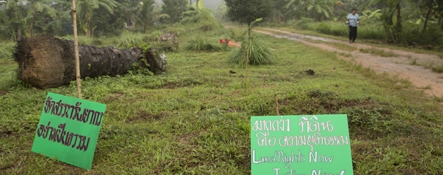 Harassed by palm oil company, Thai village defends land