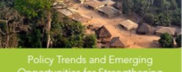 Policy trends and emerging opportunities for strengthening community land rights in Africa