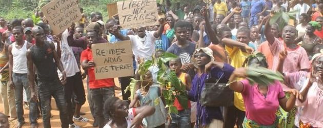 Land conflict in Côte d'Ivoire: local communities defend their rights against SIAT and the state