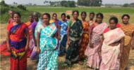 Thumb_dalit_women_land_collective