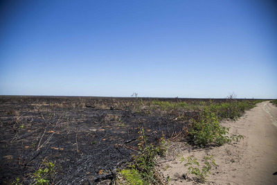 Public Note: In the Cerrado of Piaui, Brazil, communities suffer violations and lose their land