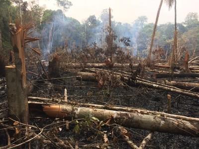Brasil: Pará lidera o ranking de assassinatos por conflitos de terra