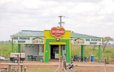 farmlandgrab.org | Kenya: Survey ordered to settle Del Monte land dispute