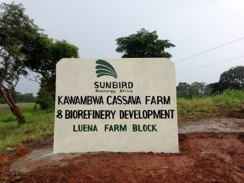 farmlandgrab org   21,500 hectares of land in Kawambwa