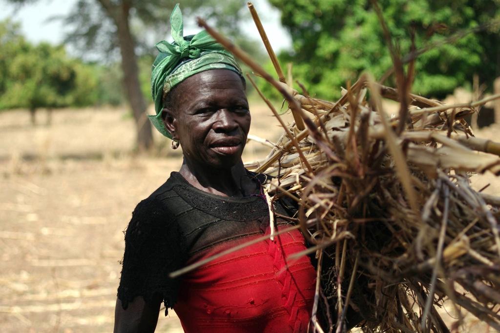 Tanzania: Bagamoyo Land Grabbing Denied