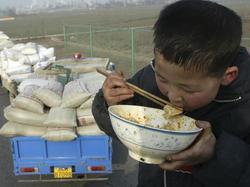 Agriculture : La Chine deviendra le premier importateur mondial Medium_starch-56453640