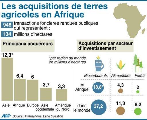 """Résultat de recherche d'images pour """"terres agricoles en Afrique"""""""