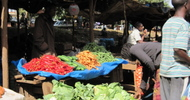 Thumb_chimoio_market_veggies2_sm