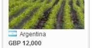 Thumb_argentina_for_sale