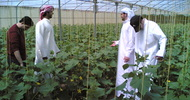 Thumb_uae_college_of_ag