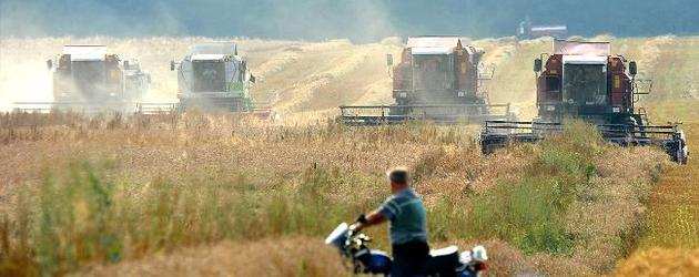 UAE invited to invest in Belarusian agricultural companies
