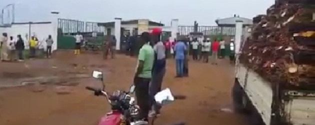Cameroun - Soulèvement : Les riverains de la Socapalm manifestent contre le Groupe Bolloré