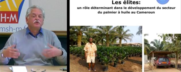 Elites urbanisées et accaparement des terres au Cameroun : l'exemple du palmier à huile