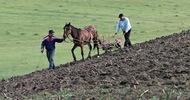 Thumb_peasant-farmers-near-ploi-012