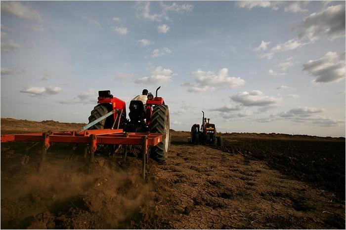 farmlandgrab org  