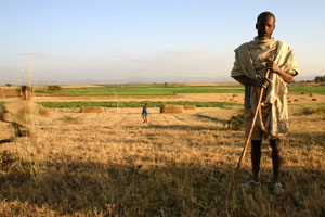 Ethiopian farmers are now painted as part of the problem, rather than a potential solution.