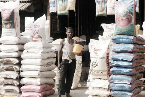farmlandgrab org | Nigeria spends N106b to import rice from