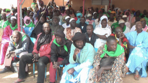 Farmers and pastoralists at the Kolongo Forum in Mali's Office du Niger call for all land deals with foreign investors to be suspended (Photo: CNOP).